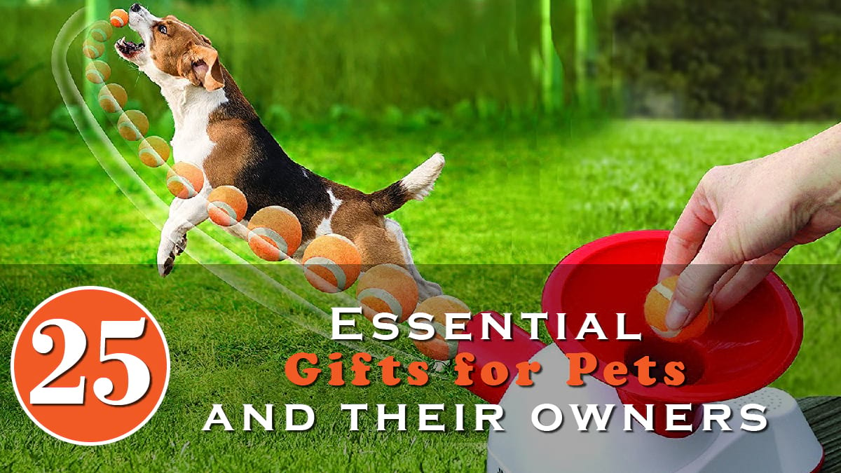 25 Essential Gifts for Pets and Their Owners Banner
