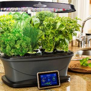 Indoor Herb Garden Set