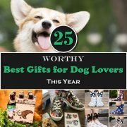 25 Worthy Best Gifts for Dog Lovers This Year