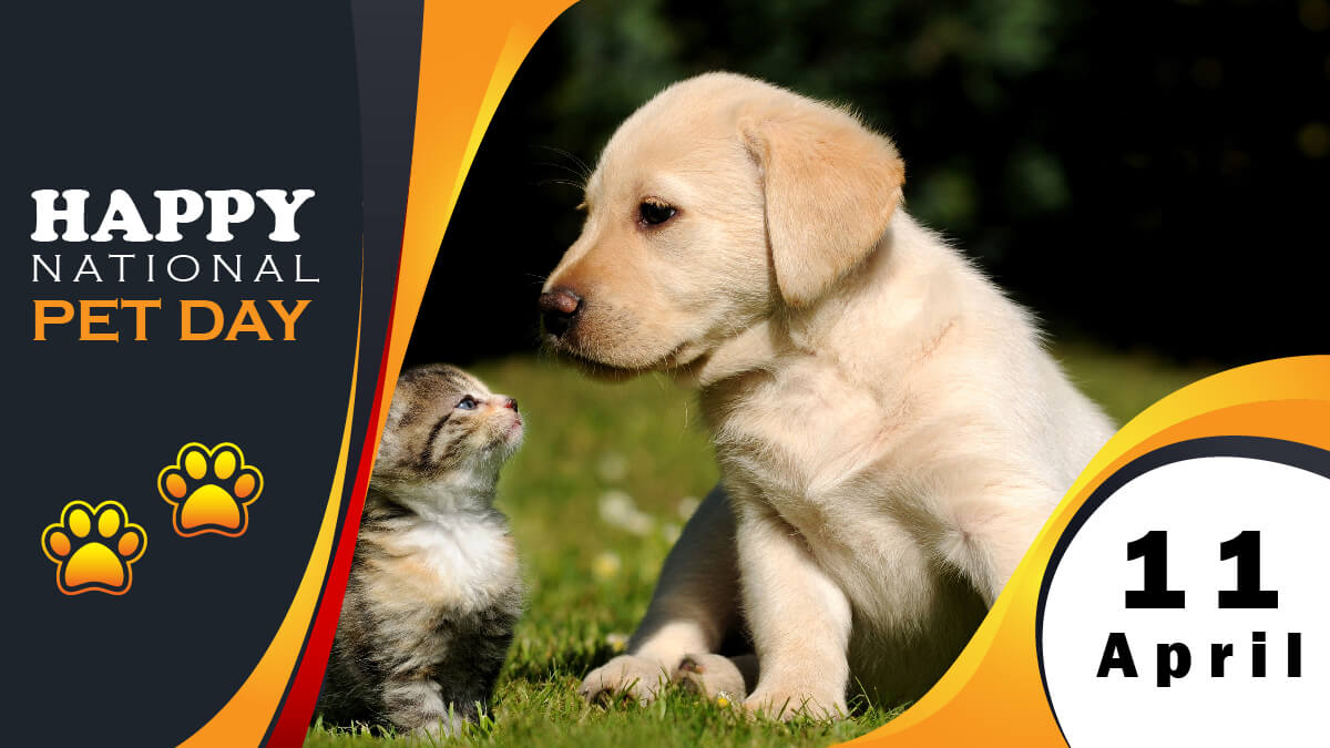 National Pet Day Post Banner