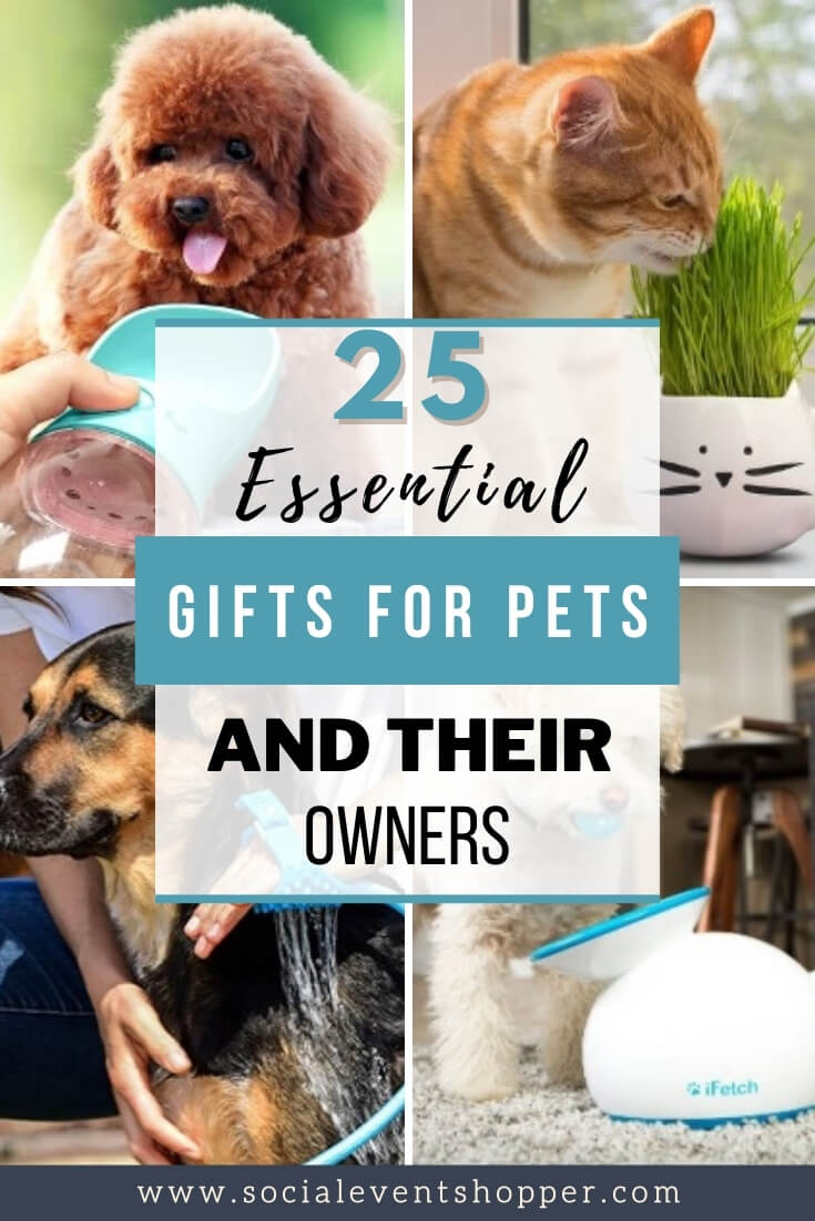 Gifts for Pets Pinterest