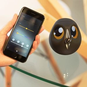 Home Monitoring Owl