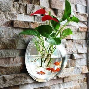Wall-Hanging Fish Bowl