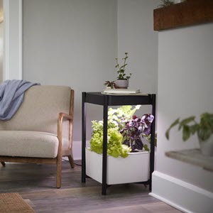 Indoor Hydroponic Garden Side Table