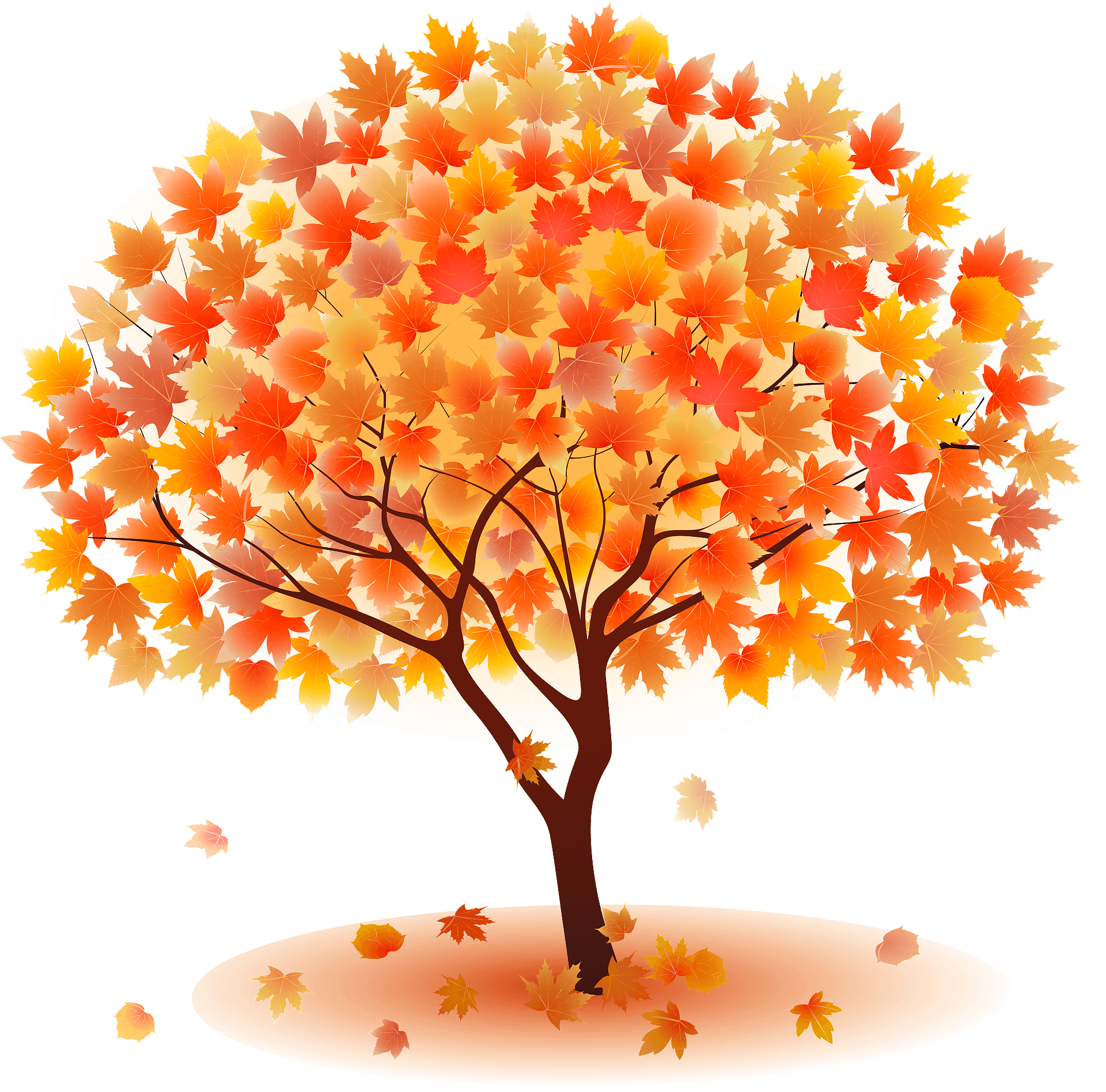 maple-tree-autumn-leaves-clipart-xl-small