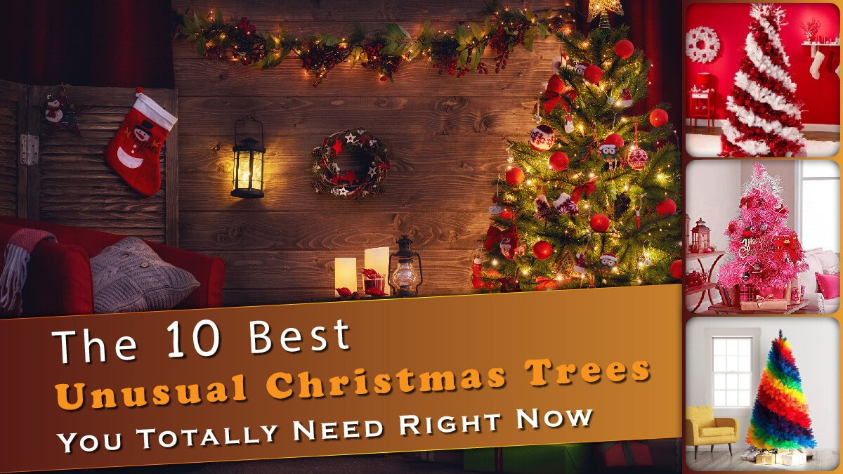 The 10 Best Unusual Christmas Trees Banner
