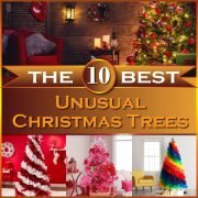 The 10 Best Unusual Christmas Trees Thumbnail